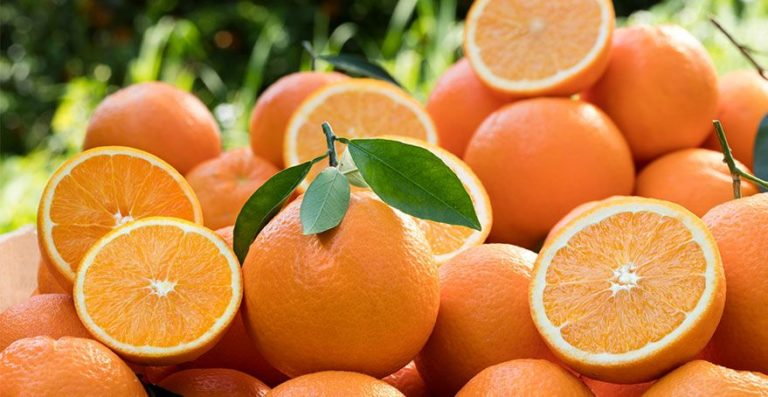 What Type of Orange Is The Best For Juicing?