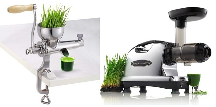 Types Of Wheatgrass Juicer