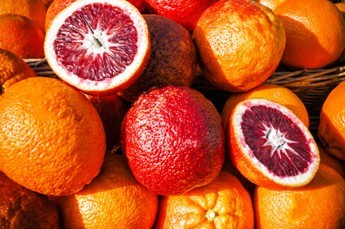 Blood Oranges - Best Oranges for juicing