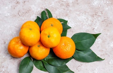 Tangerines Oranges - type of orange