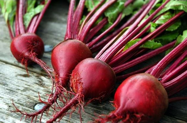 What Is beet