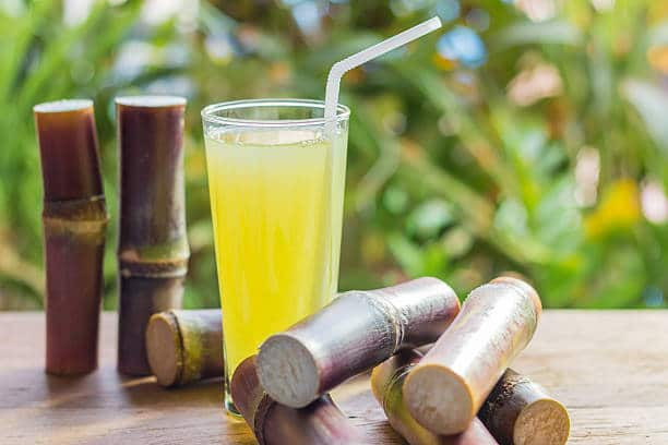 How To Make Sugarcane Juice With A Breville Juicer